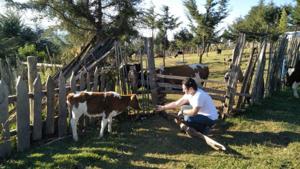 Sustainable Development Community e. V. - livestock development